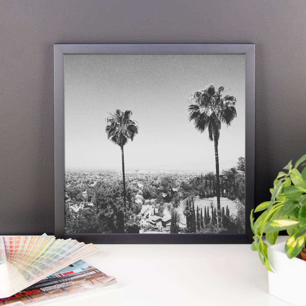Framed B+W print of the iconic palm trees of Hollywood