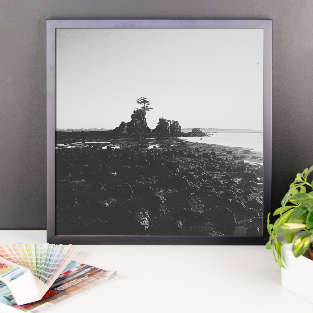 Framed B+W Oregon Coast print