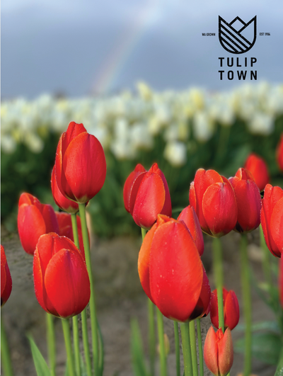 Tulip Town Memberships