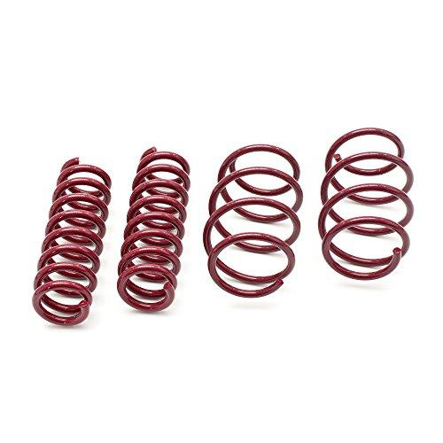Vogtland 956054 Sport Lowering Spring Kit Coil Springs Fits: Vw Golf Iii Jetta 4 - Dana Port