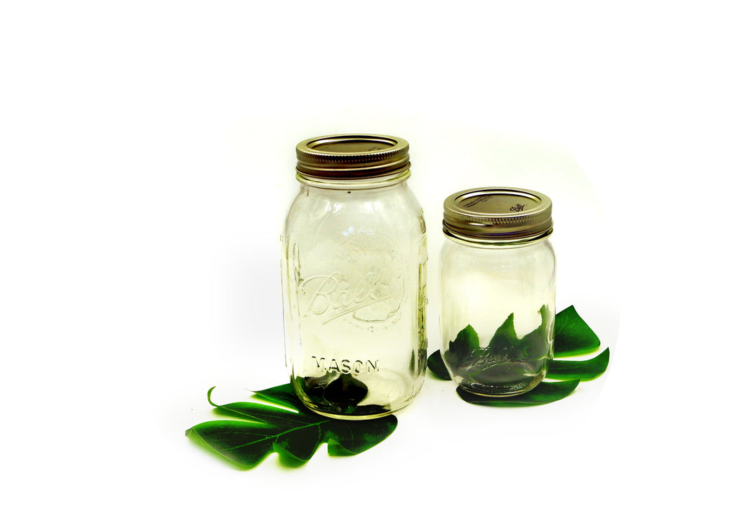 Mason Jar | Durable Glass