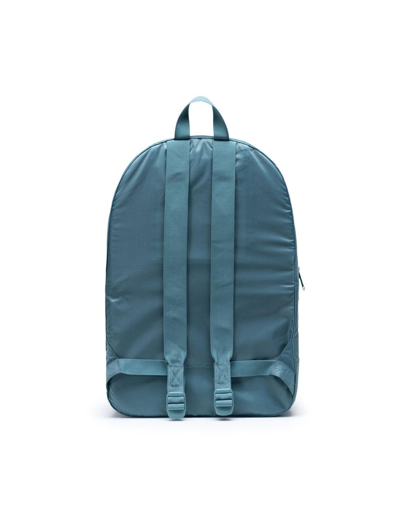 Packable Daypack x Arctic