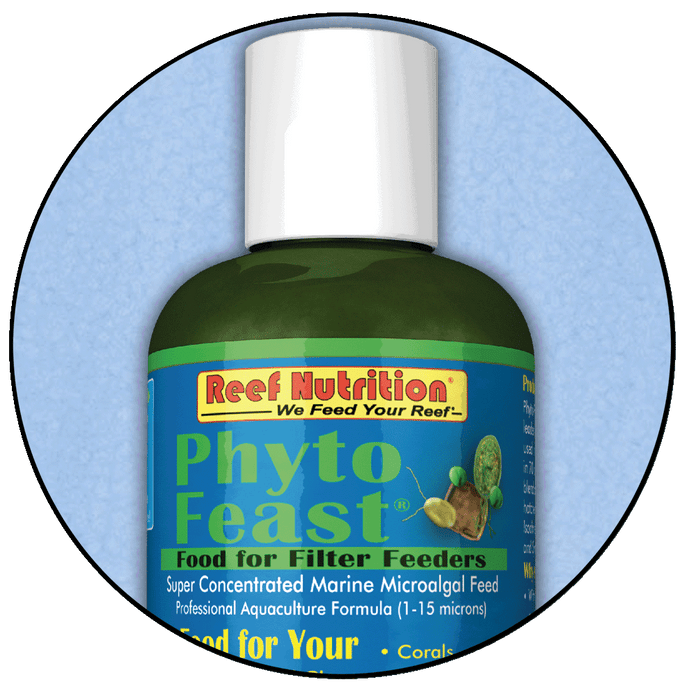 Phyto-Feast Concentrate, 6 oz Bottle