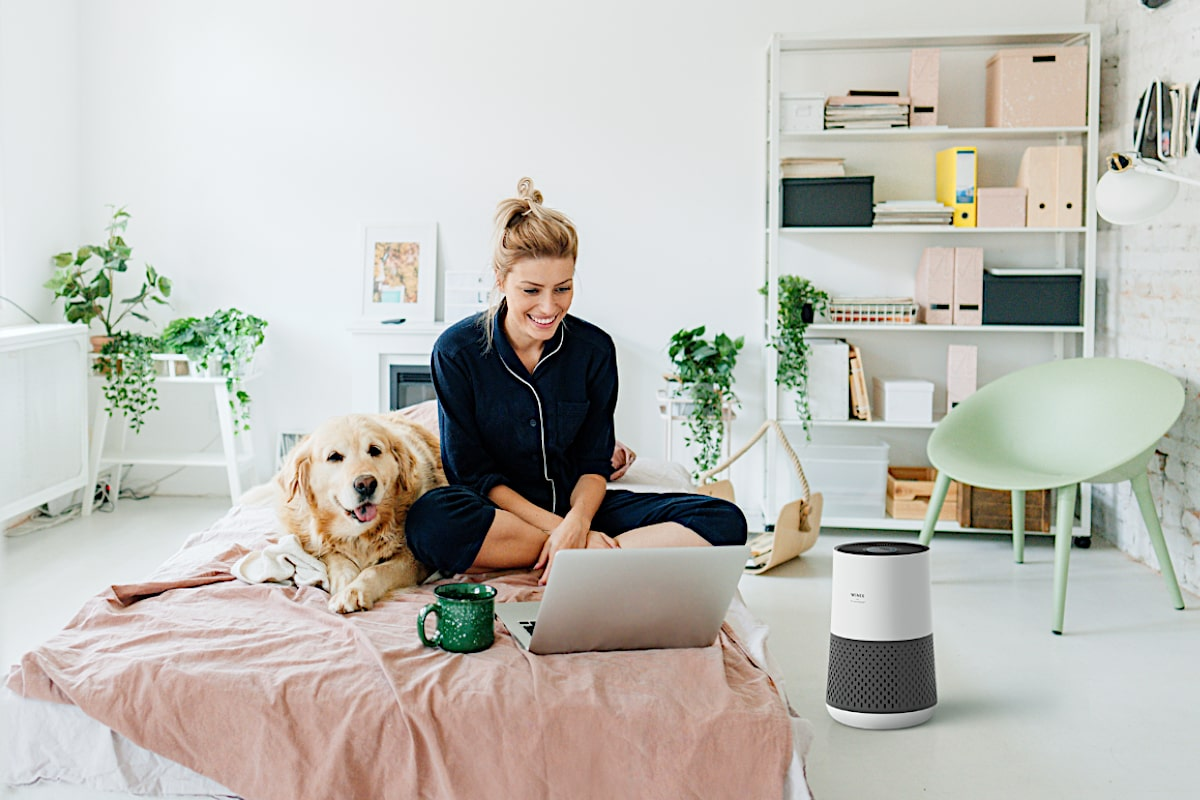 Winix Zero Compact Room Air Purifier Woman On Bed With Dog - Aerify