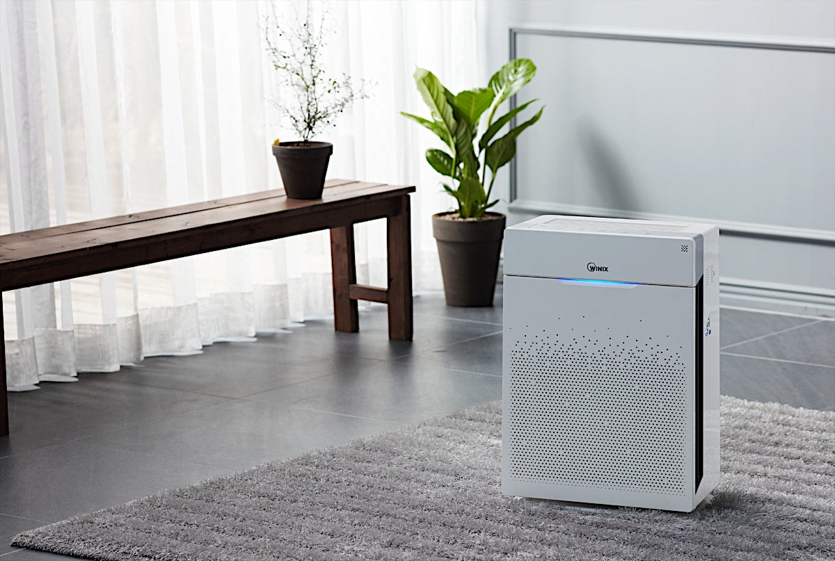 Winix Zero Pro Room Air Purifier In The Living Room - Aerify