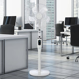 EcoAir Zephyr Low Energy 16 DC Pedestal Fan In Office - Aerify