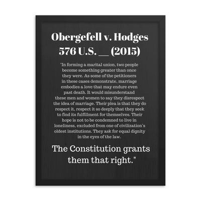 Law Poster - Obergefell v. Hodges Supreme Court Case Quote - Framed Art for Lawyers - The Legal Boutique