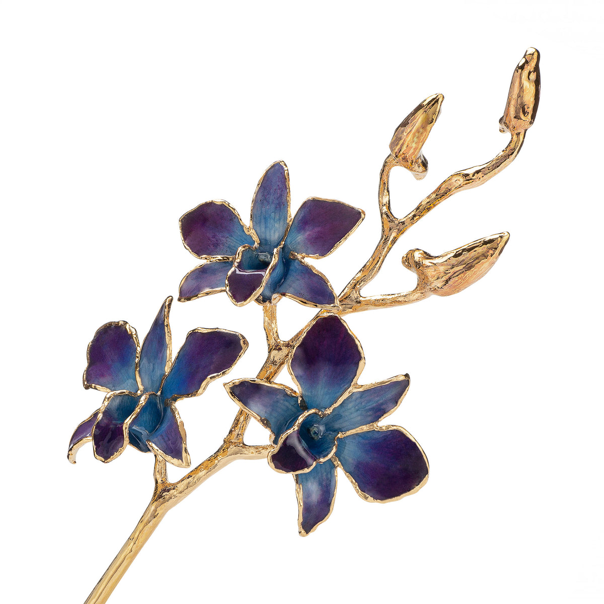 24K Gold Dipped Orchid in Lilac Blue view of gold stem and flowers