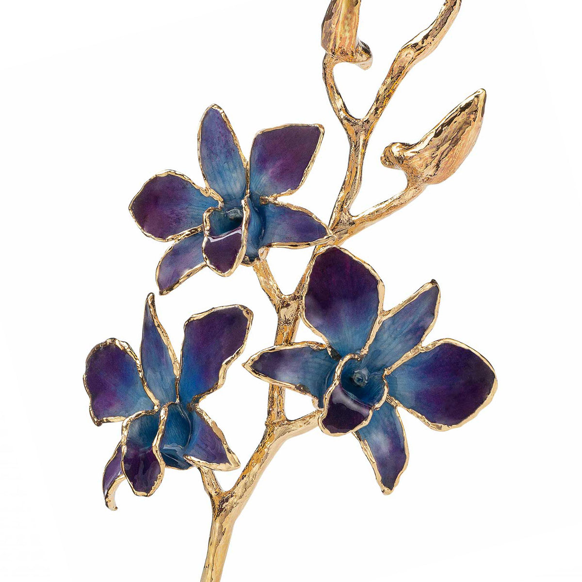 24K Gold Dipped Orchid in Lilac Blue view of gold stem and flowers closeup view