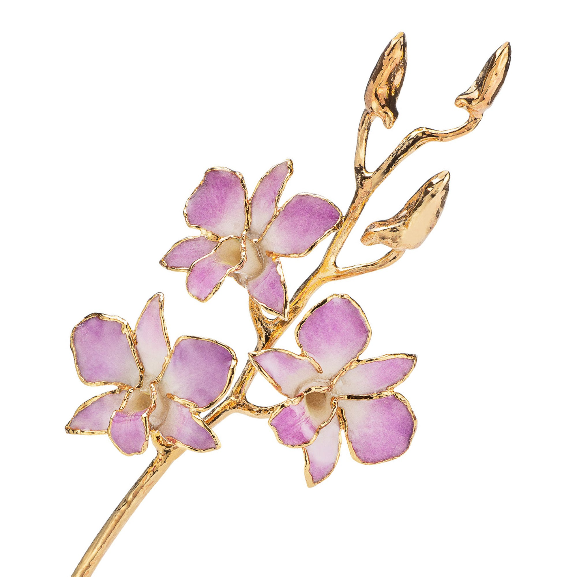 24K Gold Dipped Orchid in Lilac view of gold stem and flowers