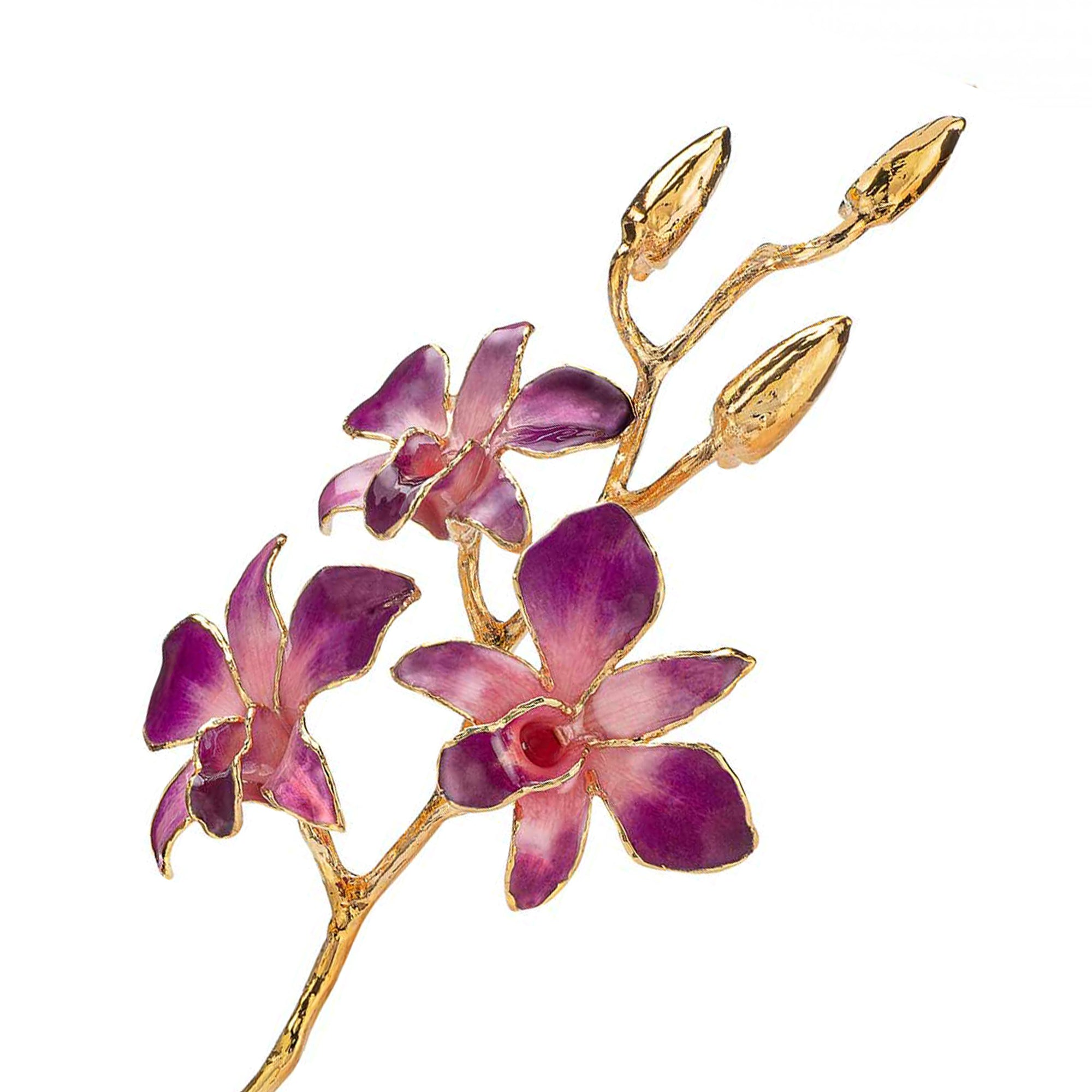 24K Gold Dipped Orchid in Lilac Pink  view of gold stem and flowers