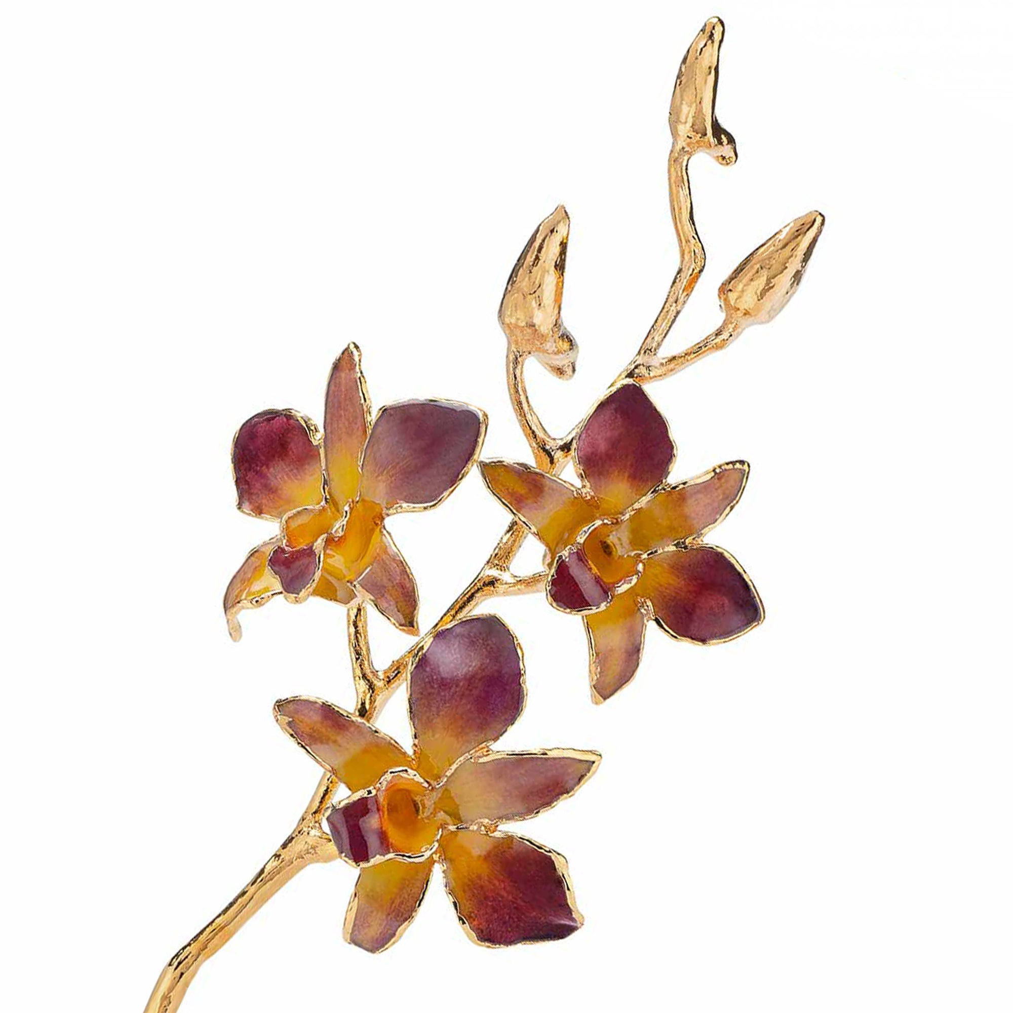 24K Gold Dipped Orchid in Lilac Yellow view of gold stem and flowers