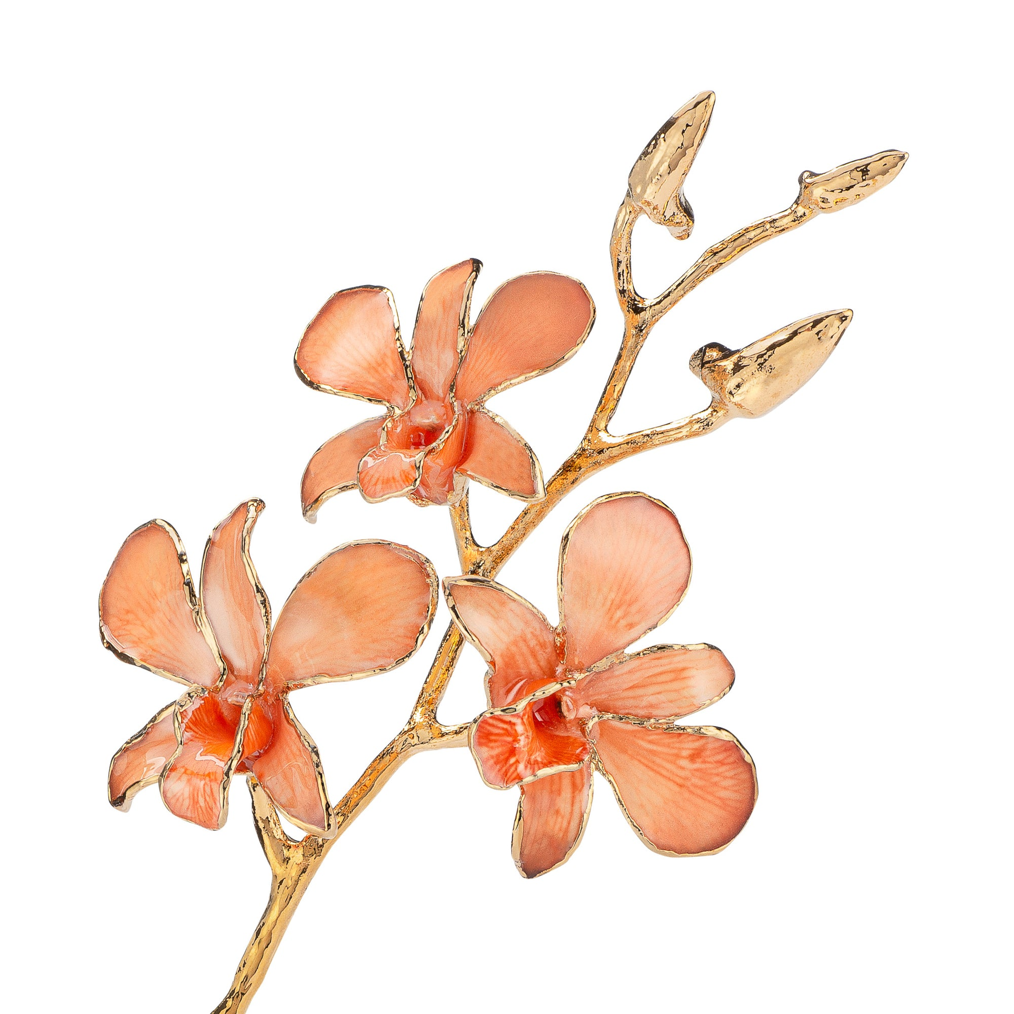 24K Gold Dipped Orchid in Peach view of gold stem and flowers