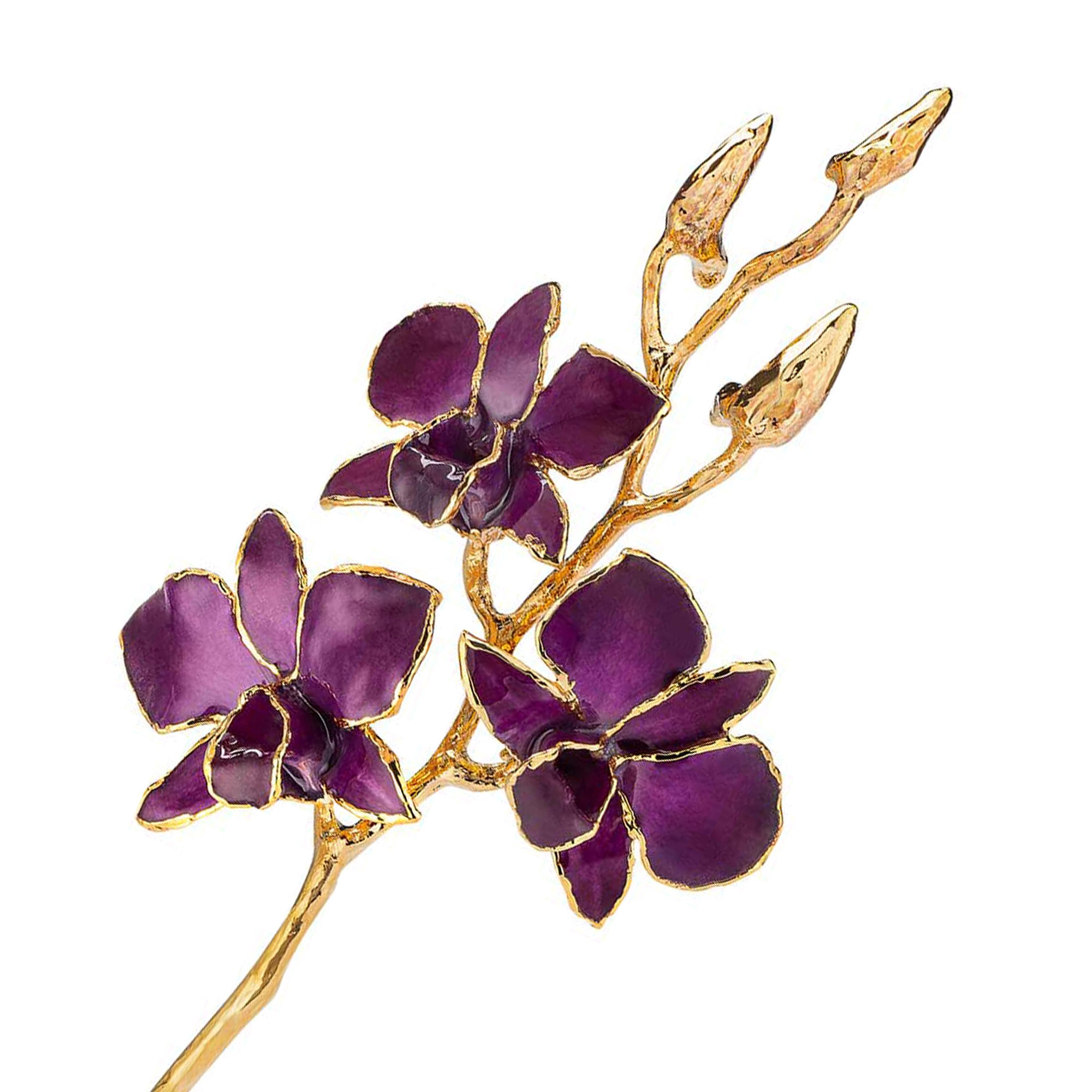 24K Gold Dipped Orchid in Purple view of gold stem and flowers