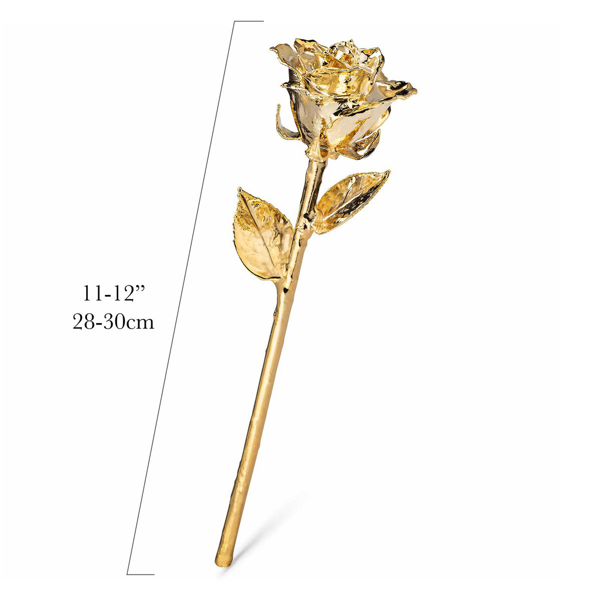 Real 24K Gold Forever Rose. Rose is fully dipped in gold. View shows the rose petals, sepals, stem, and leaves covered in 24 karat gold. The measurements 11 to 12 inches, 28-30 cm are shown.