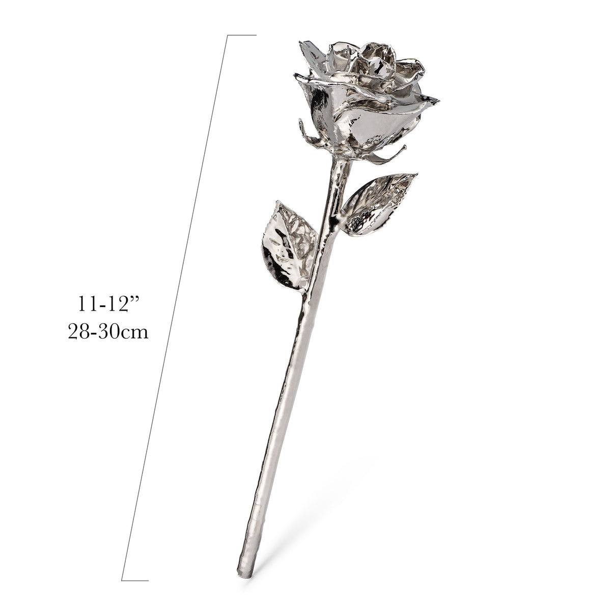 Platinum Dipped Roses: Combo Deal
