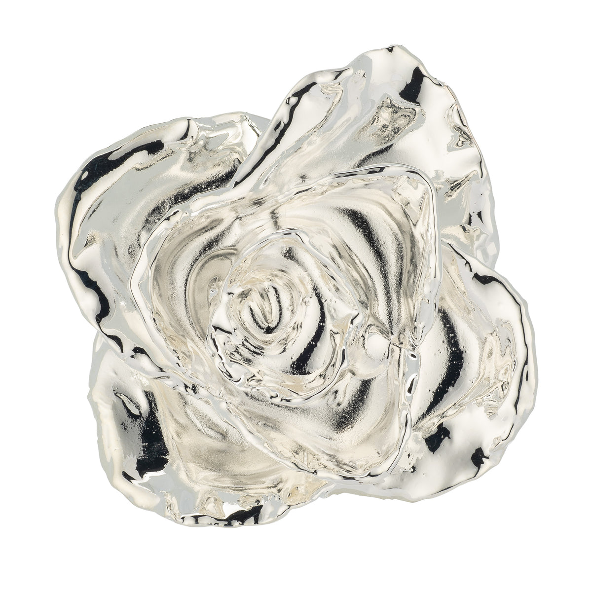 Silver Dipped Roses: Combo Deal