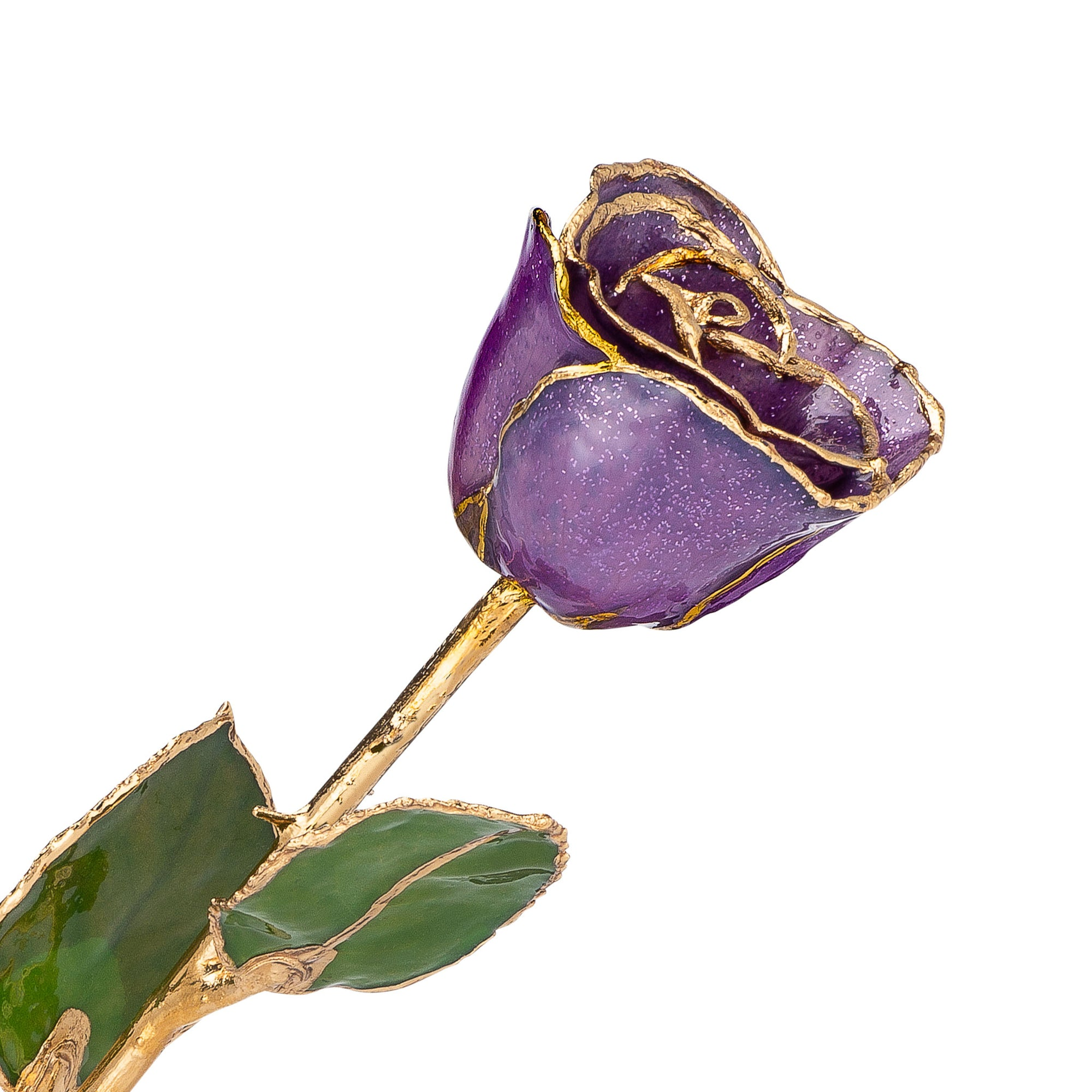 24K Gold Trimmed Forever Rose with Amethyst (purple color) with sparkles suspended in the finish. View of Stem, Leaves, and Rose Petals and Showing Detail of Gold