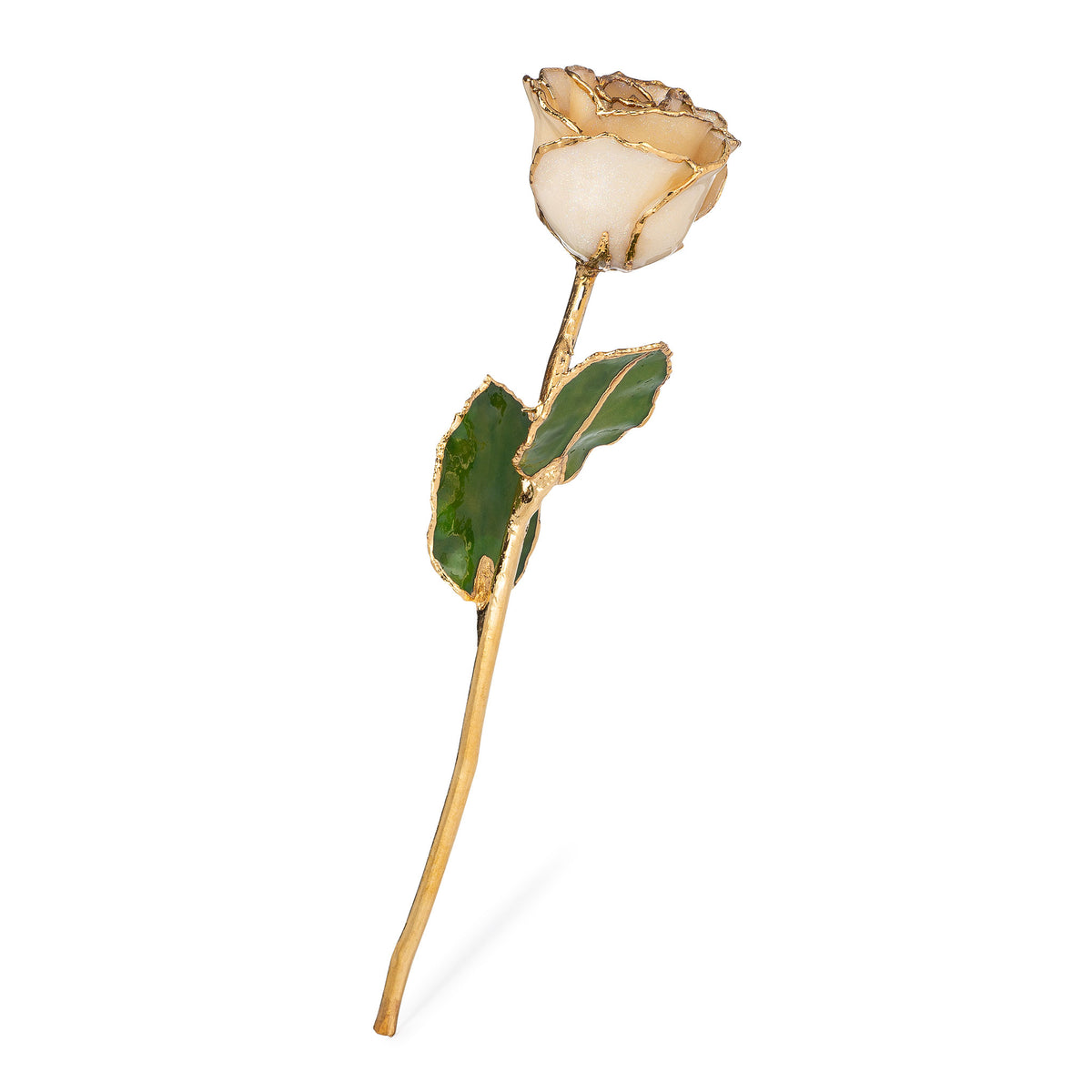 24K Gold Trimmed Forever Rose with Diamond Petals with Sparkles. View of Stem, Leaves, and Rose Petals and Showing Detail of Gold Trim