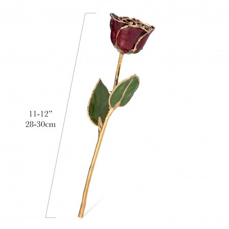 24K Gold Forever Rose - Garnet (January Birthstone)