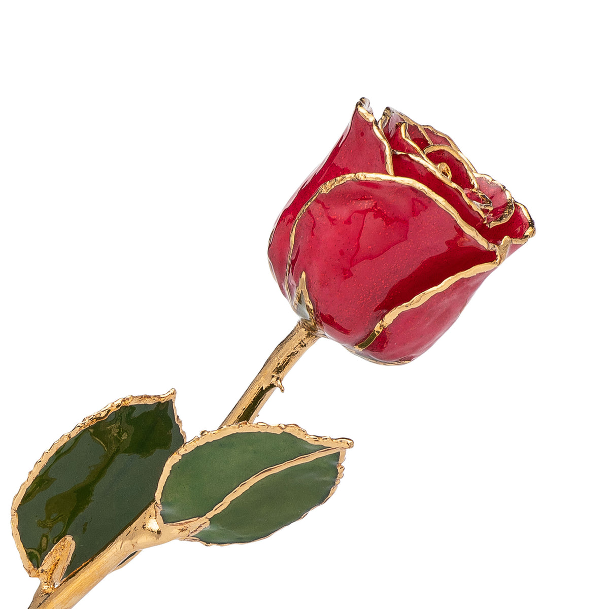 24K Gold Trimmed Forever Rose with Red Petals with Suspended Sparkles. View of Stem, Leaves, and Rose Petals and Showing Detail of Gold Trim