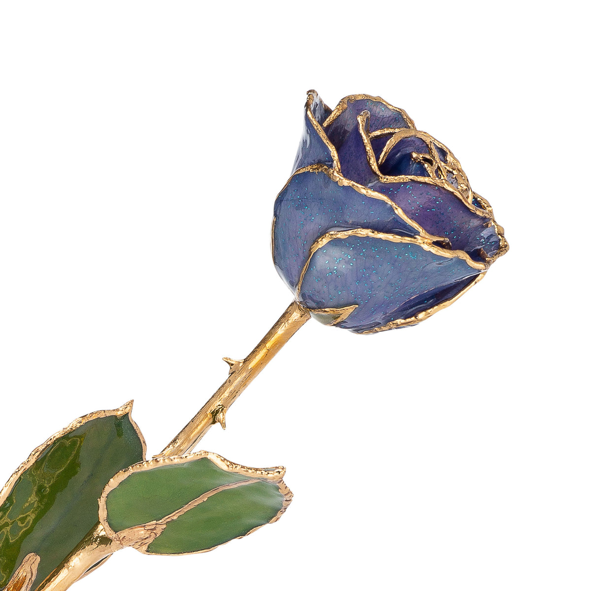 24K Gold Trimmed Forever Rose with Tanzanite (Purple, Lavender, and Blue color blend) Petals with Sapphire Blue Suspended Sparkles. View of Stem, Leaves, and Rose Petals and Showing Detail of Gold Trim