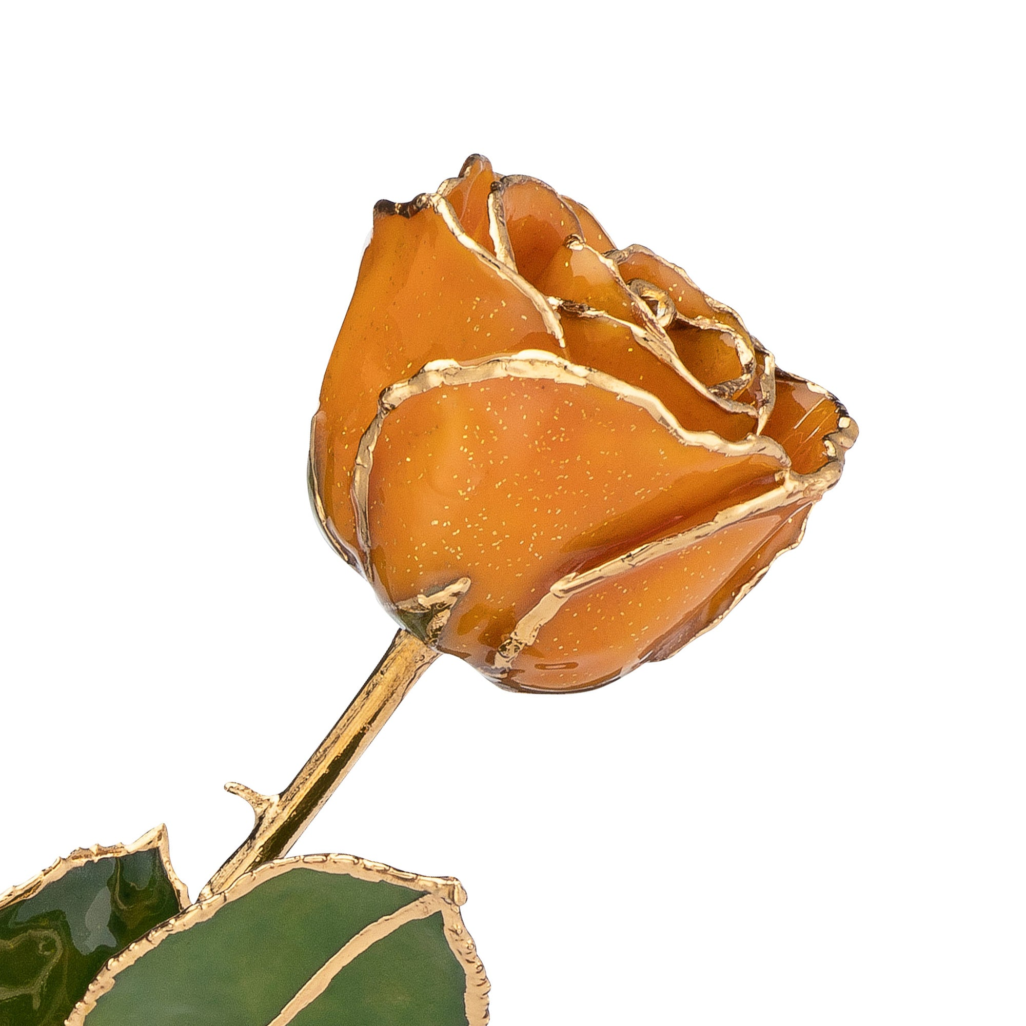 November Birthstone Rose - 24K Gold Trimmed Forever Rose with Topaz or Citrine (Amber color) Petals with Gold colored Suspended Sparkles. View of Stem, Leaves, and Rose Petals and Showing Detail of Gold Trim