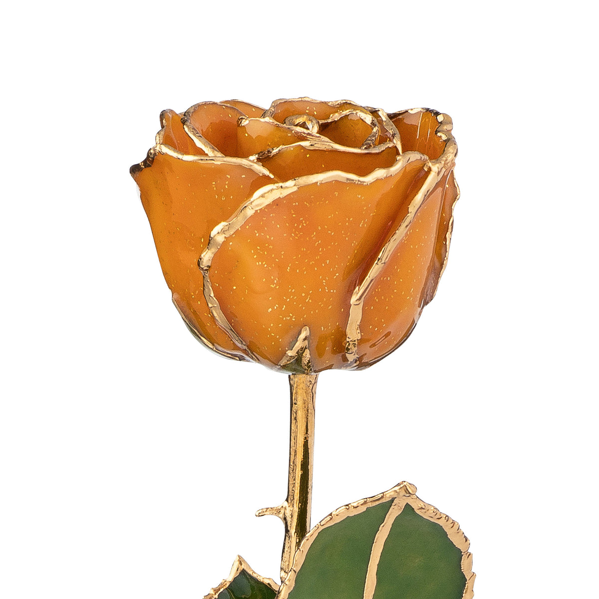 24K Gold Trimmed Forever Rose with Topaz or Citrine (Amber color) Petals with Gold colored Suspended Sparkles. View of Stem, Leaves, and Rose Petals and Showing Detail of Gold Trim