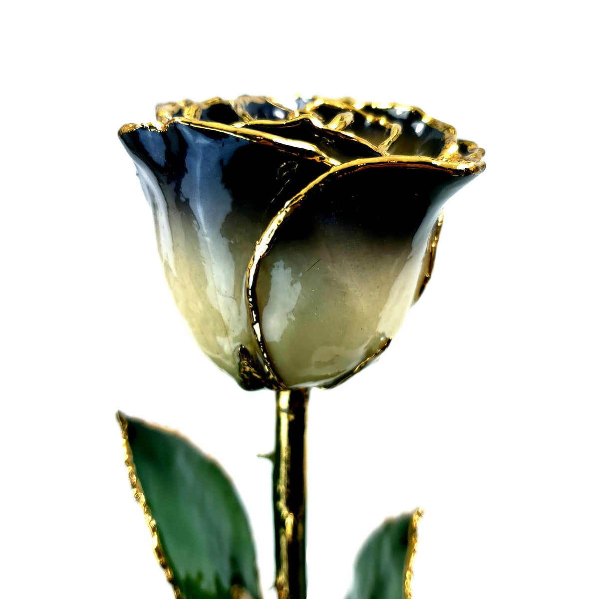 24K Gold Forever Rose - The Twilight Rose