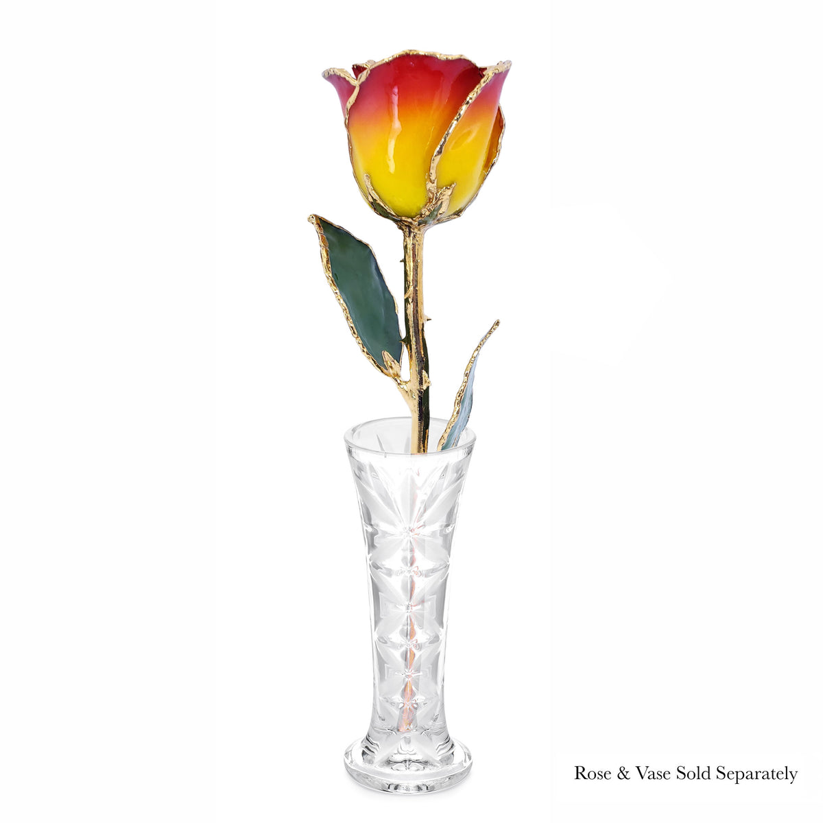 24K Gold Forever Rose - Yellow to Red