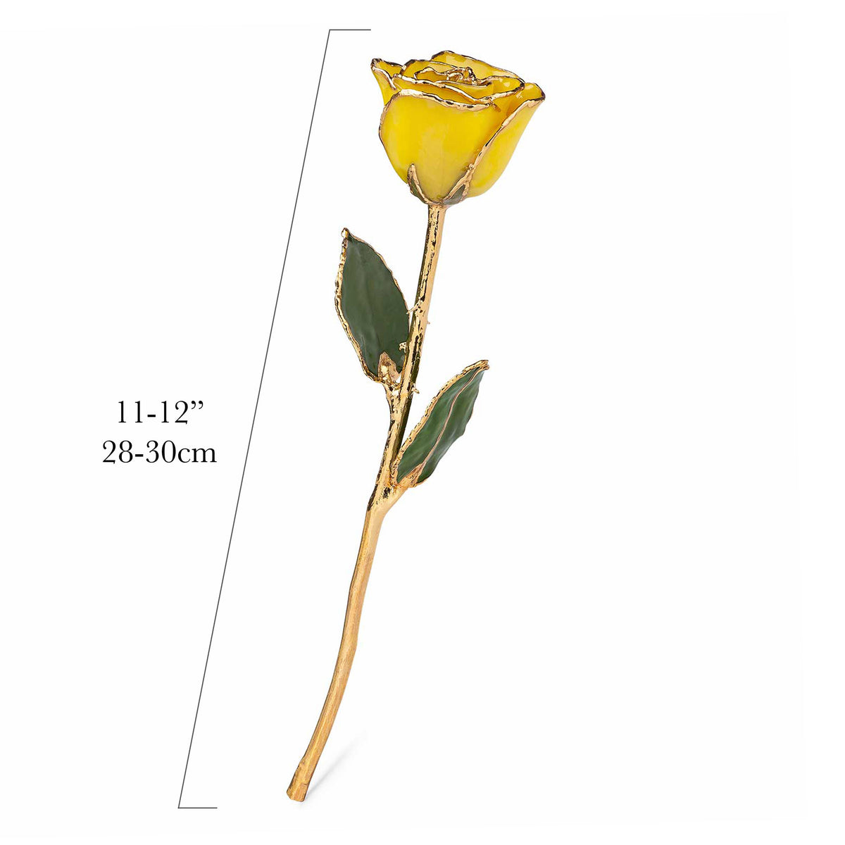 24K Gold Trimmed Forever Rose with Yellow Petals. View of Stem, Leaves, and Rose Petals and Showing Detail of Gold Trim. Measurements of rose shown.