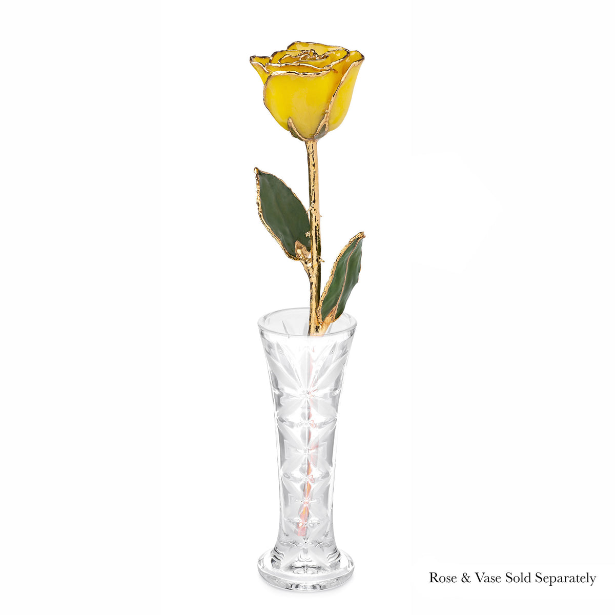 24K Gold Forever Rose - Yellow