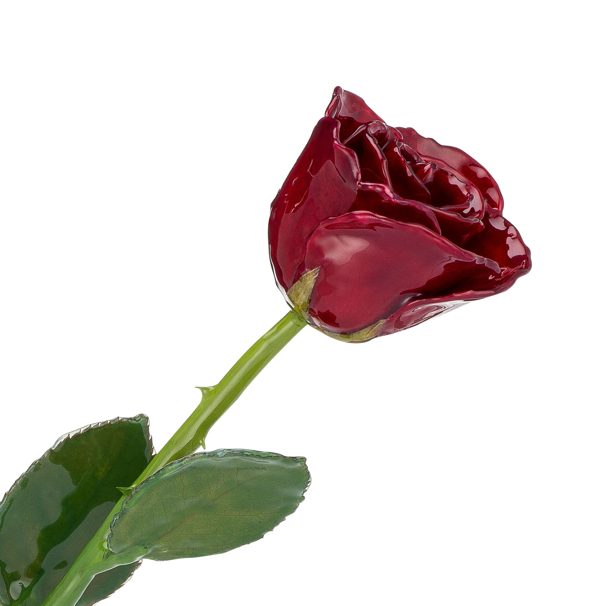Natural (Green Stem) Forever Rose with Deep Red, Burgundy Colored Petals. View of Stem, Leaves, and Rose Petals. This a Forever Rose without any gold or other precious metals on it.