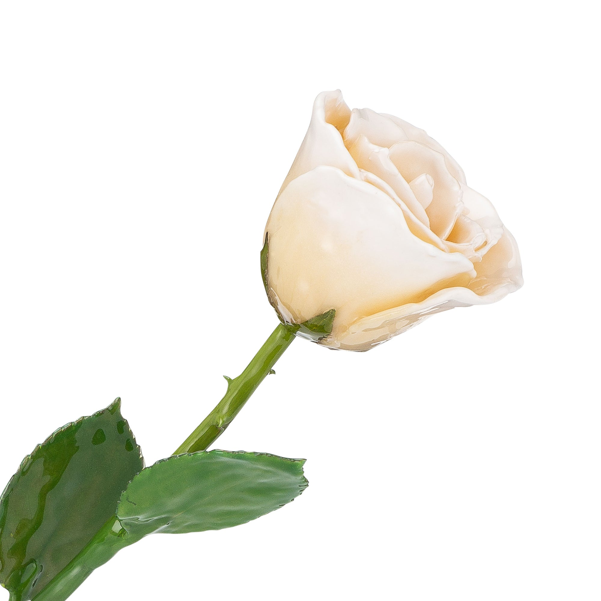 Natural (Green Stem) Forever Rose with White Colored Petals. View of Stem, Leaves, and Rose Petals. This a Forever Rose without any gold or other precious metals on it.