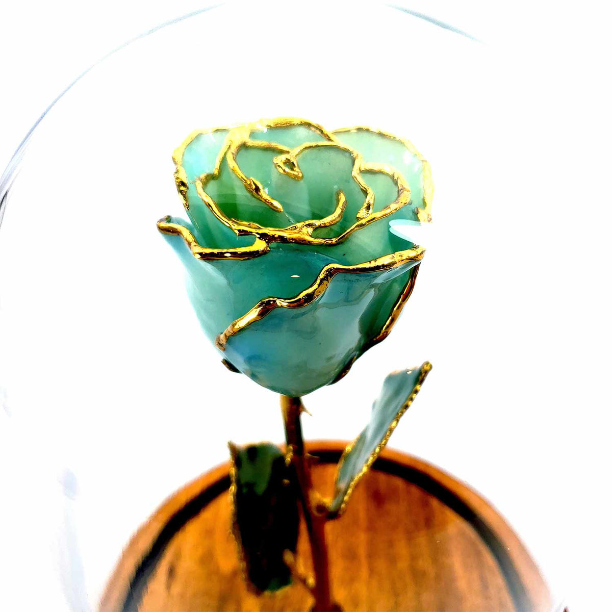 Custom Enchanted Rose w/ 24K Gold Trim Roses