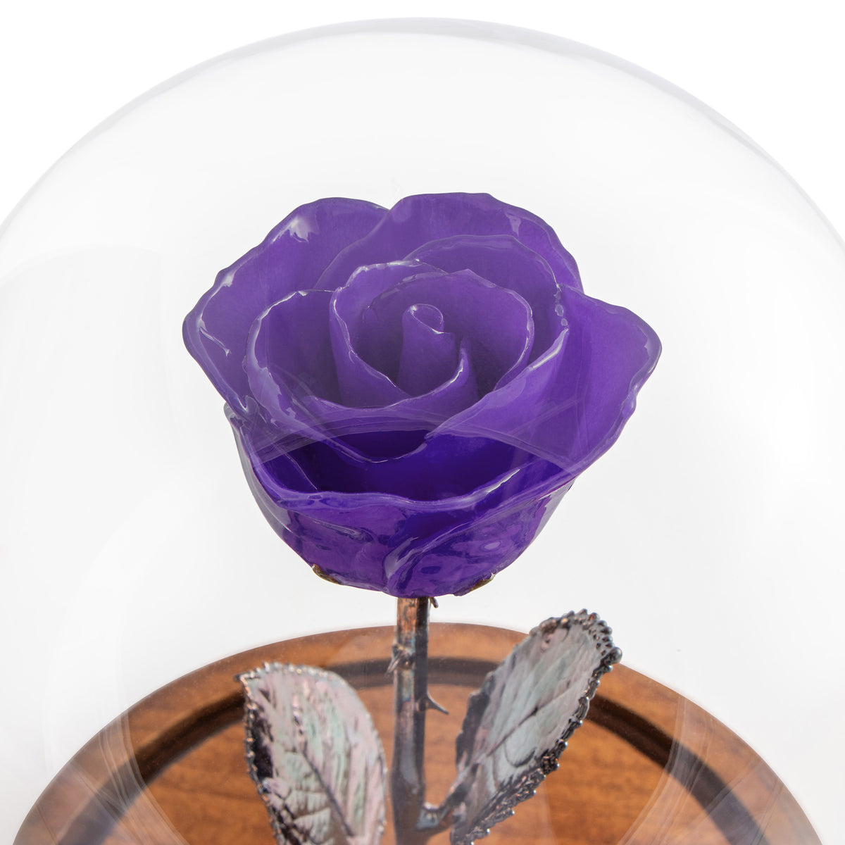 Purple Enchanted Rose (aka Beauty & The Beast Rose) with Patina Copper Stem Mounted to A Hand Turned Solid Wood Base under a glass dome. Zoomed in view of flower.