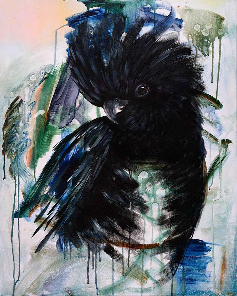Art Print Amanda Skye Vincent the Glossy Black Cockatoo