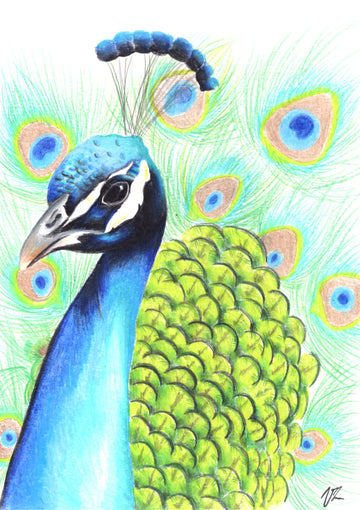 Vilarte - Peafowl Original Artwork