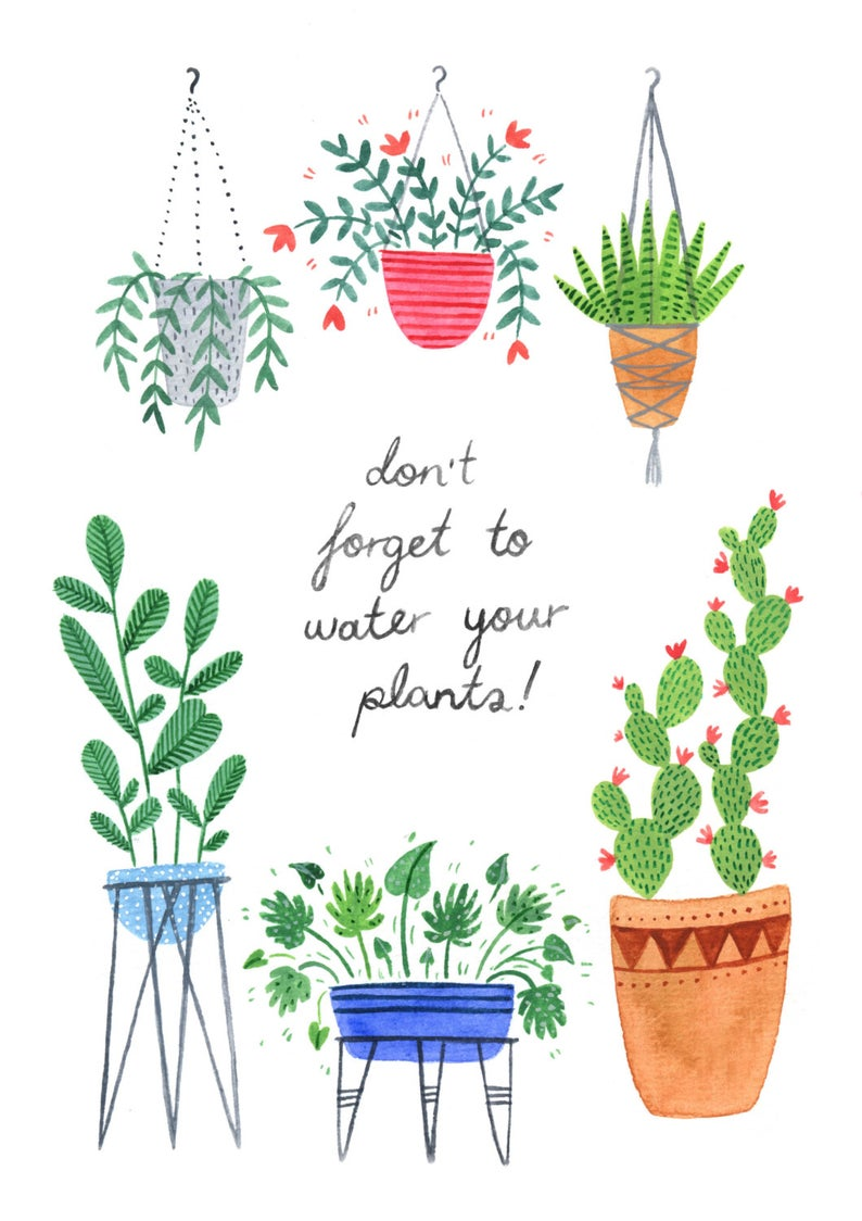 Andrina Manon Don't Forget to Water Your Plants Watercolour Art Print
