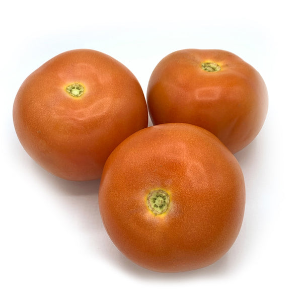 Normal Tomatoes