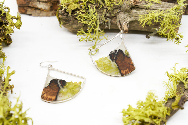 Branch and Barrel Lichen & Juniper Asymmetrical Wide Fan Earrings earrings.  Central Oregon Lichen & Juniper suspended in resin, framed in hand forged sterling-silver or 14k gold-fill.  **New Design**  Buy One, Plant One - One tree planted for every Branch+Barrel piece sold.
