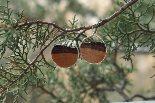 Branch and Barrel Basswood small hoop earrings.   Hand cut basswood framed in your choice of hand forged metal; 14k gold-fill or sterling silver.  Buy One Plant One - One tree planted for every Branch and Barrel piece sold!
