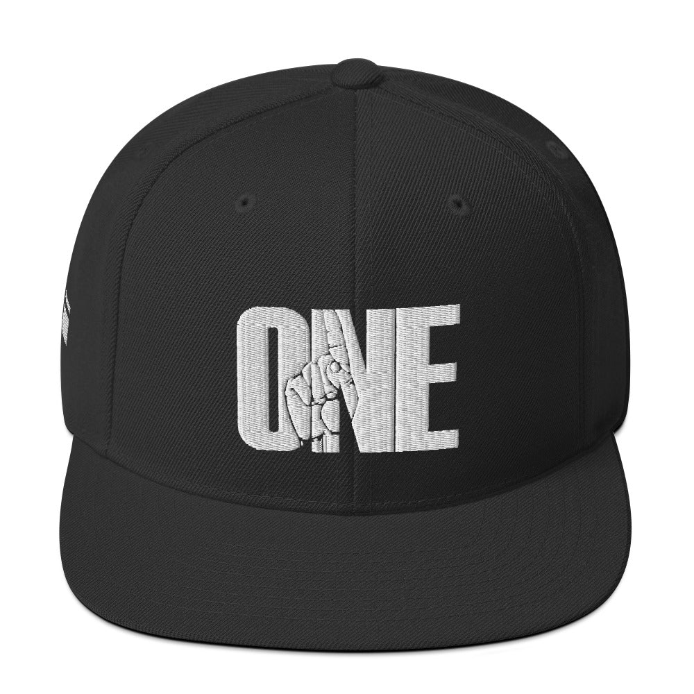 ONE Snapback Hat