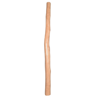 Learner Didgeridoo Didgeridoo | Free Shipped World Wide