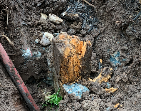Rotted post