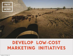 Develop low-cost marketing initiatives