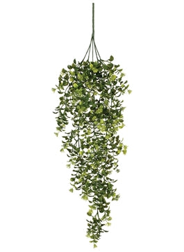 BOXWOOD BERRY HANGING