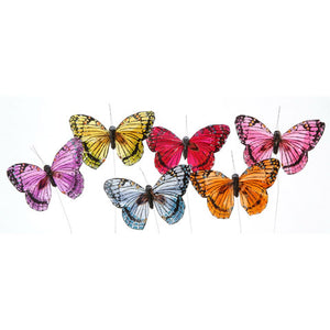Butterfly - Assorted Color with Brown Tip - 5 inches