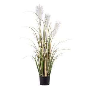 47 inch Potted Pampas Grass Decor