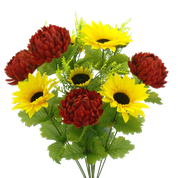 Color Fast Mum Sunflower Bush x 11